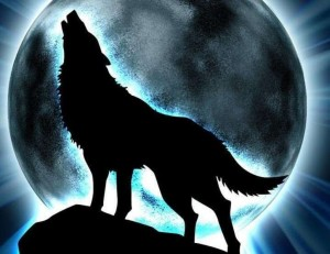 Tatuaggio Lupo Wolf (1)