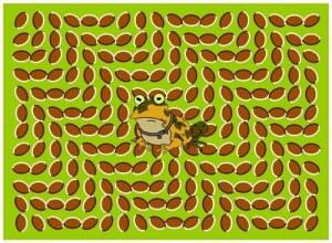 Hypnotoad_illusione_ottica